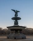 Bethesda Fountain-1 social
